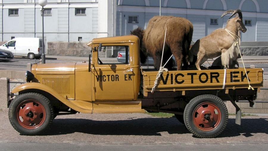 victor-ek-isoja-elaimia